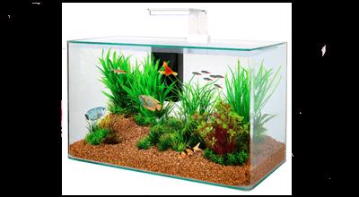 Zolux Clear aquaria