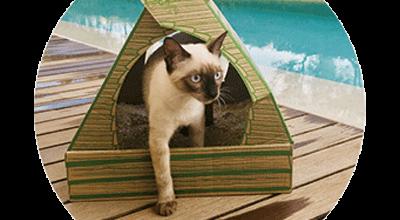 Milieuvriendelijk, stofvrij en hygiënisch: de kattenbak en vulling van Pipikat